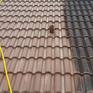Tile-Roof-Cleaning