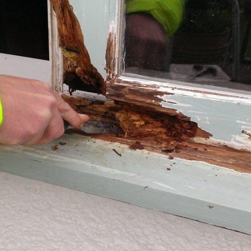 Timber Repair 1 700